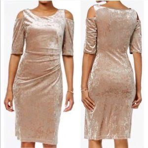 NWT Connected Apparel Beige Velvet Dress Size 12